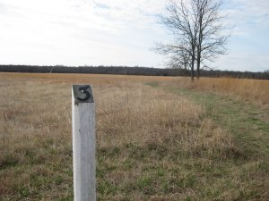 Looking South from Mine Creek Battlefield Tour Stop 3