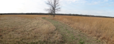 Looking South toward Mine Creek and Confederate Line of Battle